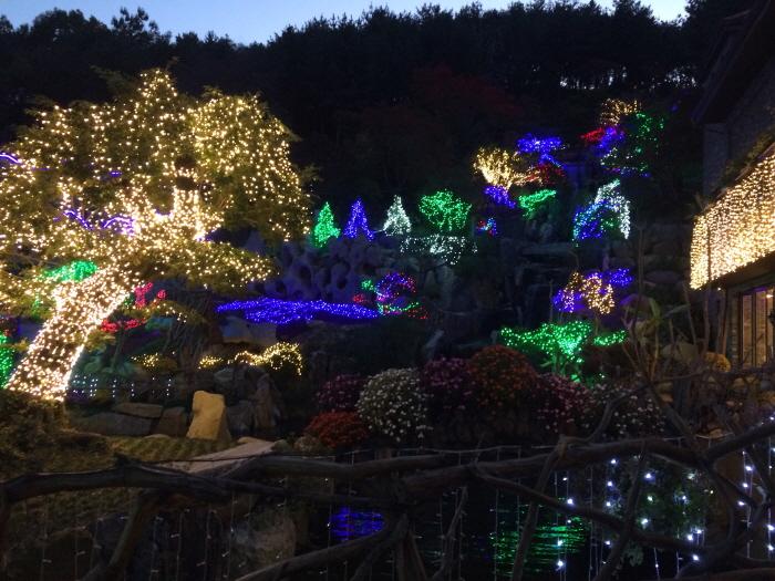 아름다운정원 화수목 사진5