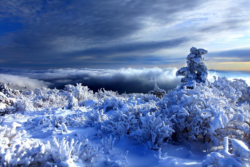 겨울 꽃산에 오르니 은세계가 열렸다, 무주 덕유산