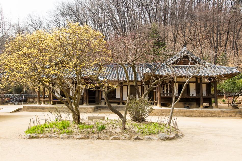 한국민속촌으로 떠나는 흥미진진 가족 여행 사진