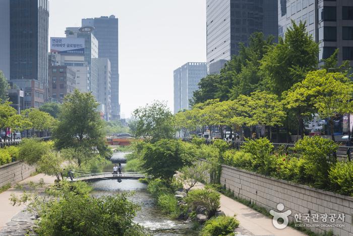 Arroyo Cheonggyecheon (청계천)