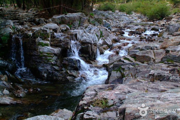 Heungjeonggyegok Valley (흥정계곡)