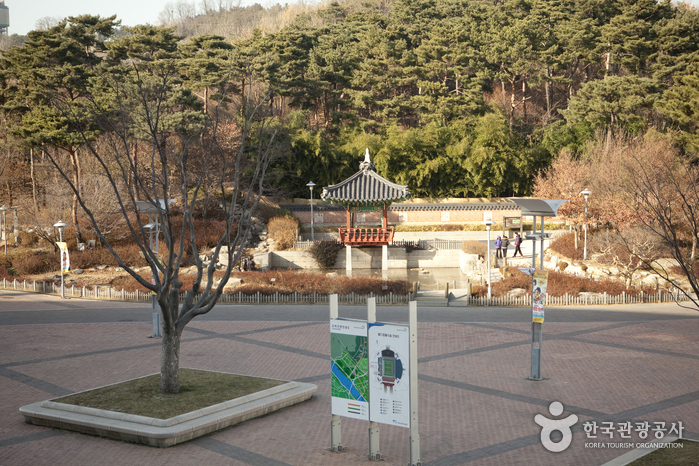 Trash: Haneul Park (하늘공원)