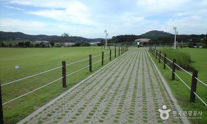 Ganghwa Dolmen Site [UNESCO World Heritage] (강화 부근리 지석묘 [유네스코 세계문화유산])