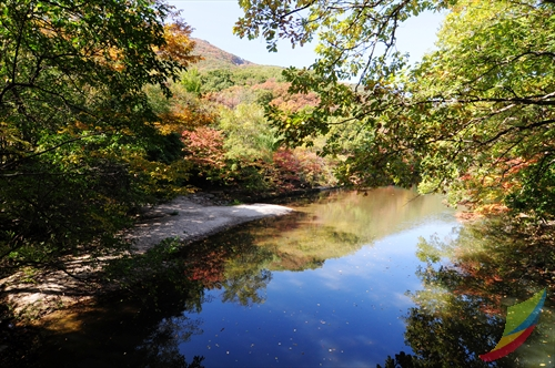 Dosol Valley (Seonunsan Mountain) (도솔계곡 (선운산))