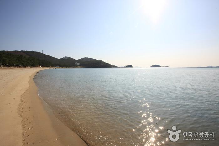 Пляж Сонхо (송호해수욕장)16