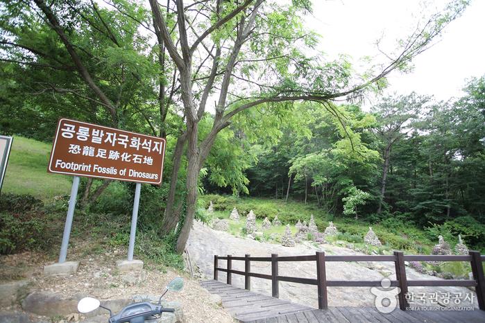 莲花山道立公园(연화산도립공원)