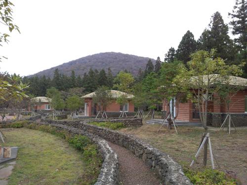붉은오름자연휴양림 사진2