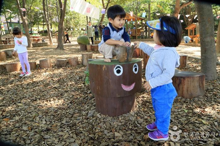 가까운 숲 속 놀이터로 초대합니다! 서울시 유아숲체험장 3선