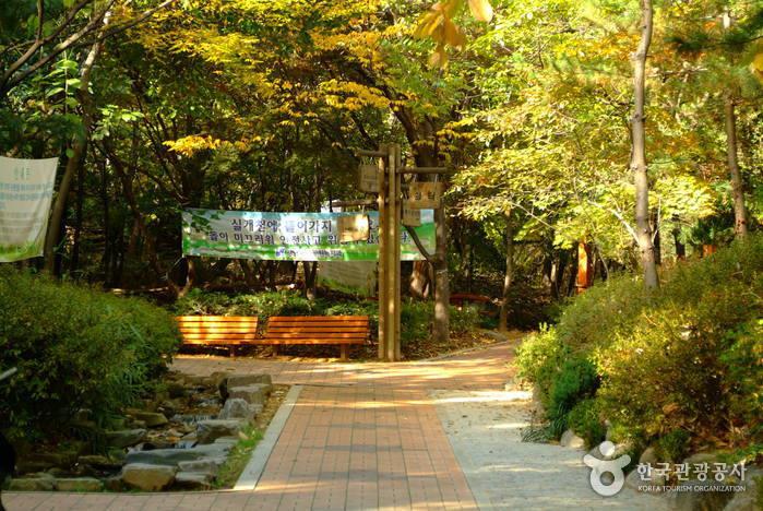 清潭公園(청담공원)