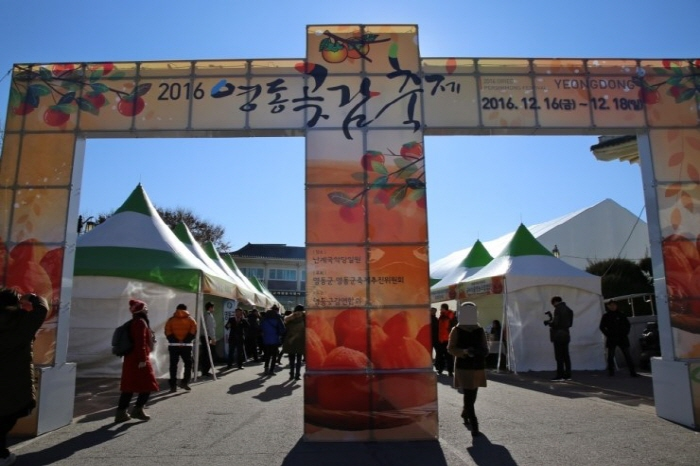 Yeongdong Dried Persimmon Festival (영동곶감축제)