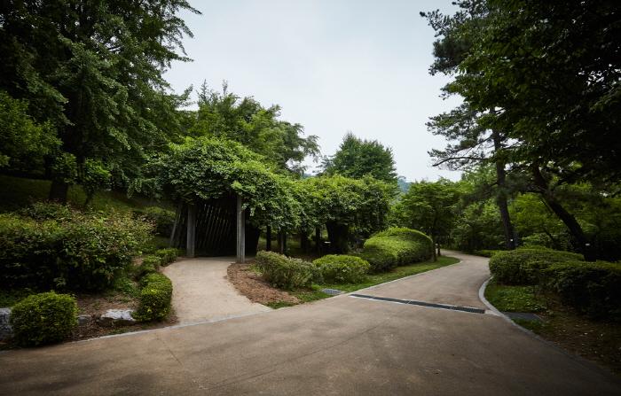 Namsan Botanical Garden (남산 야외식물원)