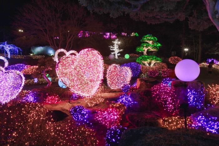 Festival des illuminations au jardin du matin...