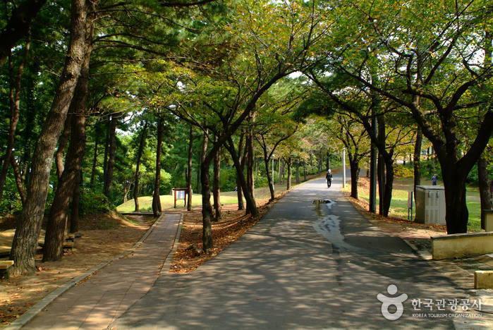 Sarabong-Park (사라봉공원)