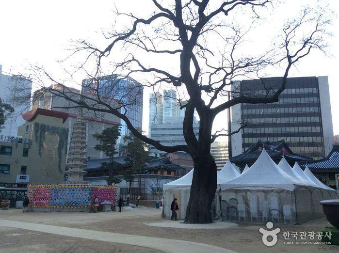 曹溪寺(首尔)조계사(서울)