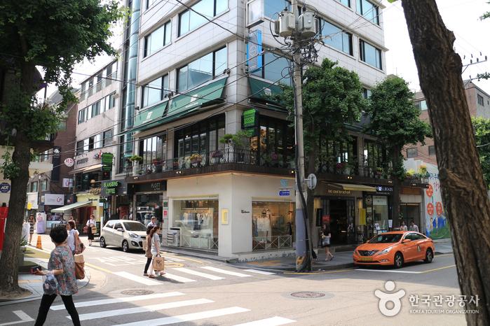 신사동 가로수길 사진4