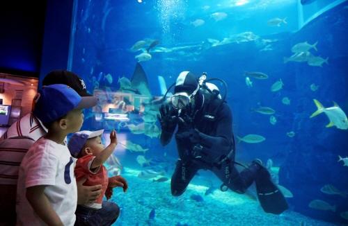 EXPO海洋公園(엑스포해양공원)6