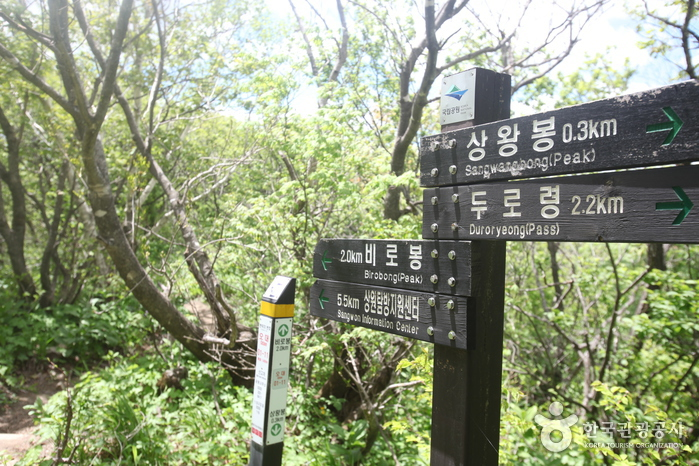 Parc National du Mt. Odaesan (오대산국립공원)