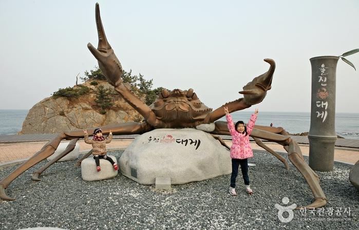 蔚珍竹蟹及紅蟹節(울진대게와 붉은대게축제)13