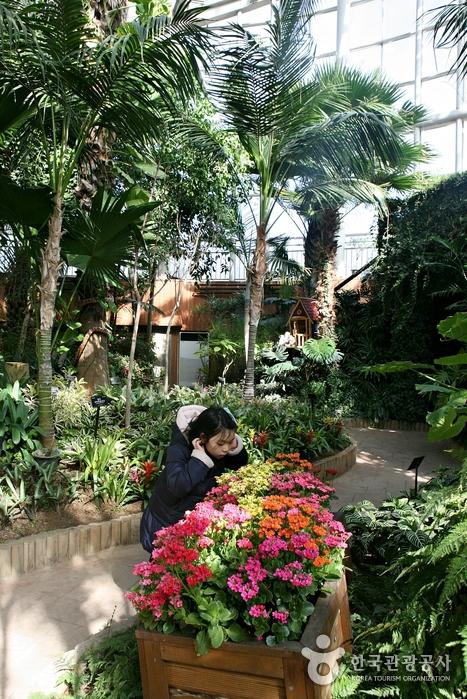 1년 내내 포근한 부천식물원 온실