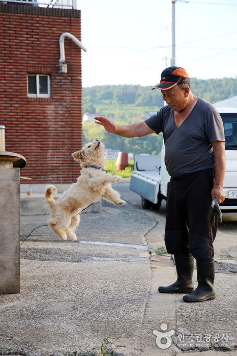 물건마을에서 만난 할아버지와 강아지