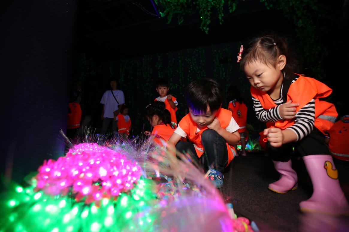 Muju Firefly Festival (무주 반딧불축제)