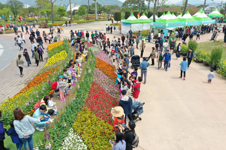 Hampyeong Butterfly Festival (함평 나비대축제)