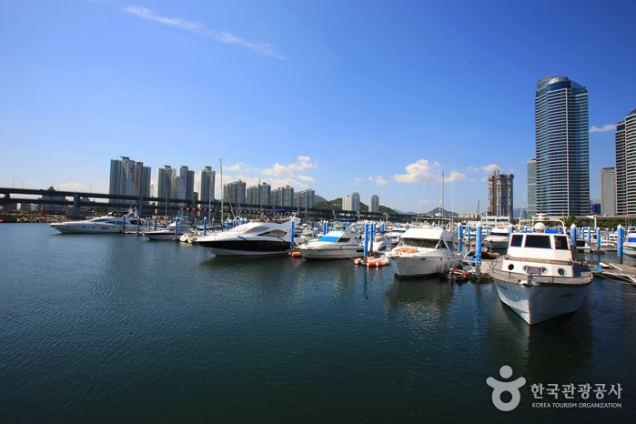 Suyoungman Segelzentrum (수영만 요트경기장)