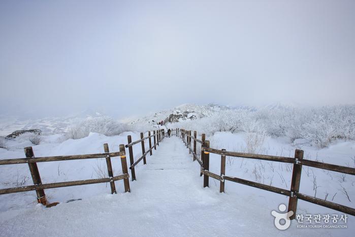 Trash: Deogyusan National Park (덕유산국립공원 (본소,적상분소))