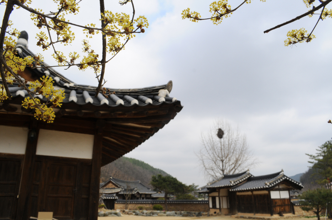 Songjeong House (송정고택)