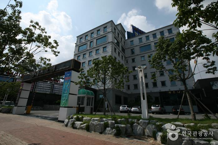 Отель Eldis Regent (엘디스 리젠트 호텔)5