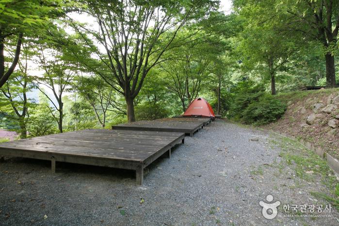 智异山国立公园(咸阳)지리산국립공원(함양)
