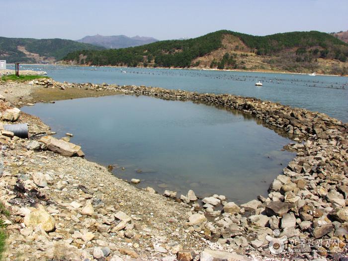 진해안골포굴강