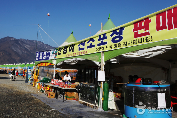 Closed: Inje Icefish Festival (인제빙어축제)