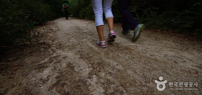 우이령길을 걷는 가족의 발걸음이 가볍다.