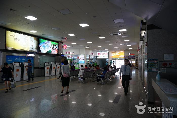 Andong Terminal (안동버스터미널)