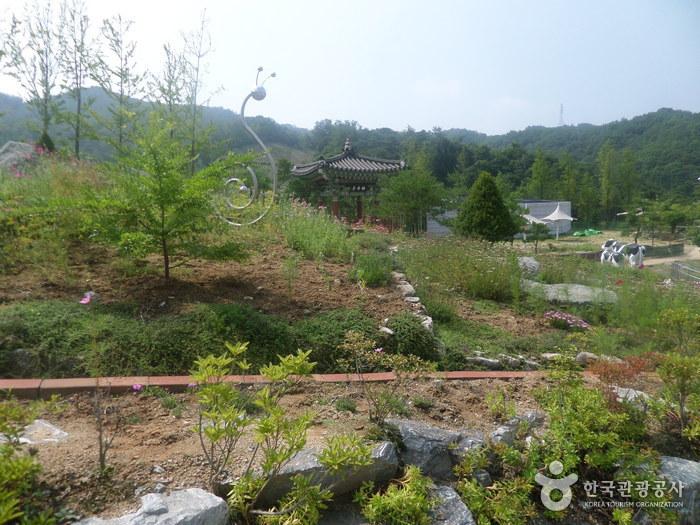 Тематический парк Ontrepieum в Андоне (안동 온뜨레피움)5