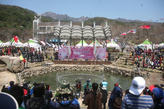 팔공산 벚꽃축제 2018  사진2