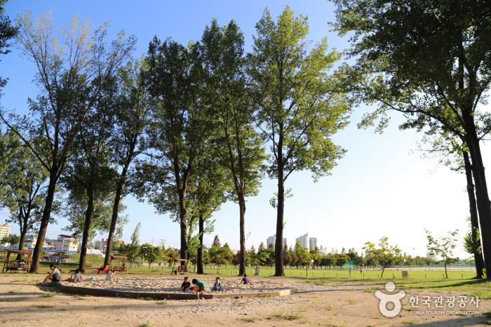 보강천 미루나무숲 모래놀이터