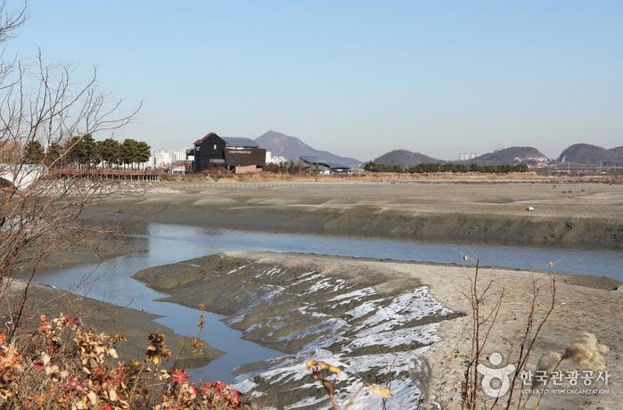 蘇莱湿地生態公園(소래습지생태공원)