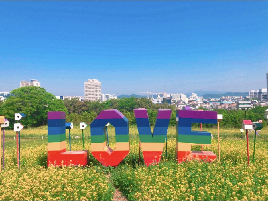 이월드 봄꽃시즌 2 : 유채한 봄
