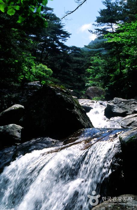 七淵渓谷(칠연계곡)