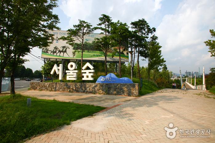 서울의 하이드파크와 전통시장