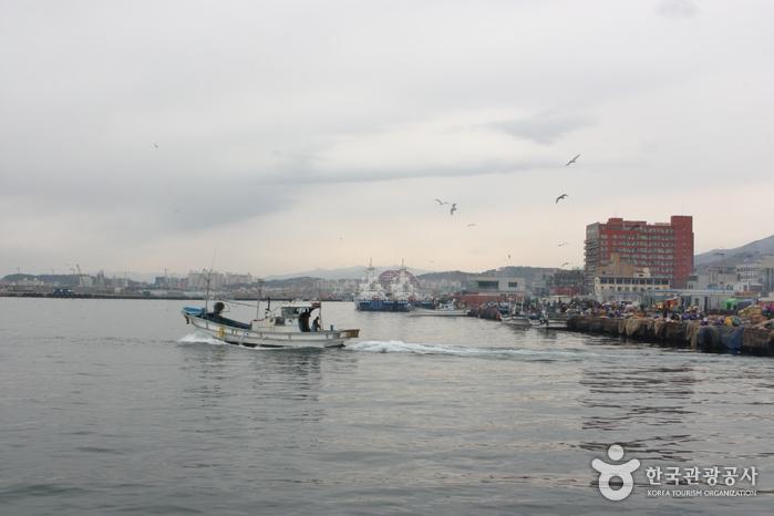 속초항 (공공기관이 추천하는 여름철 선박 해양 시설)