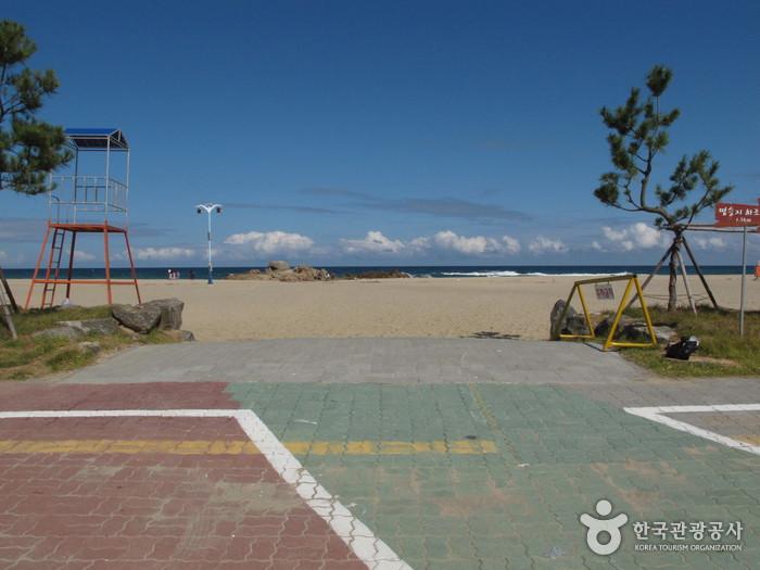 Hajodae Beach (하조대해변)