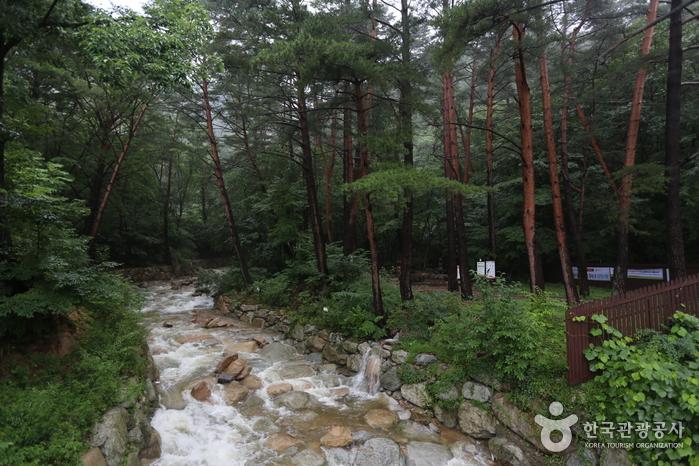 Daeseung-Wasserfall (대승폭포)