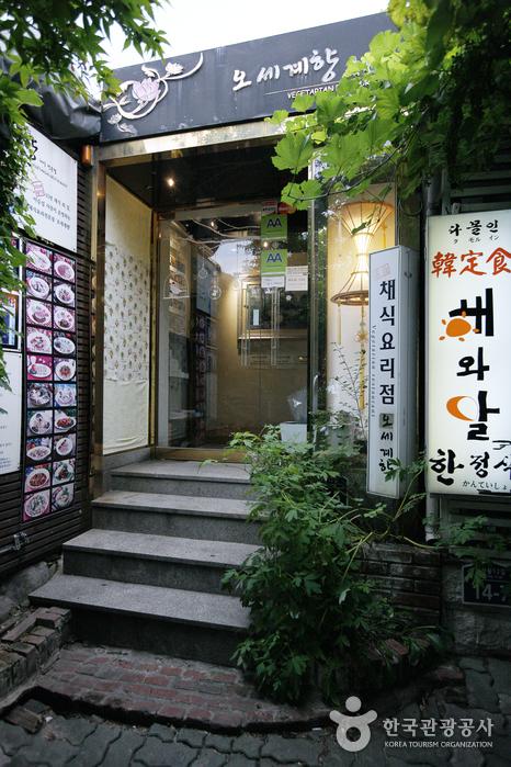 Vegetarian Restaurant Osegyehyang (채식요리전문점 오세계향)