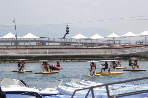 EXPO海洋公園(엑스포해양공원)7