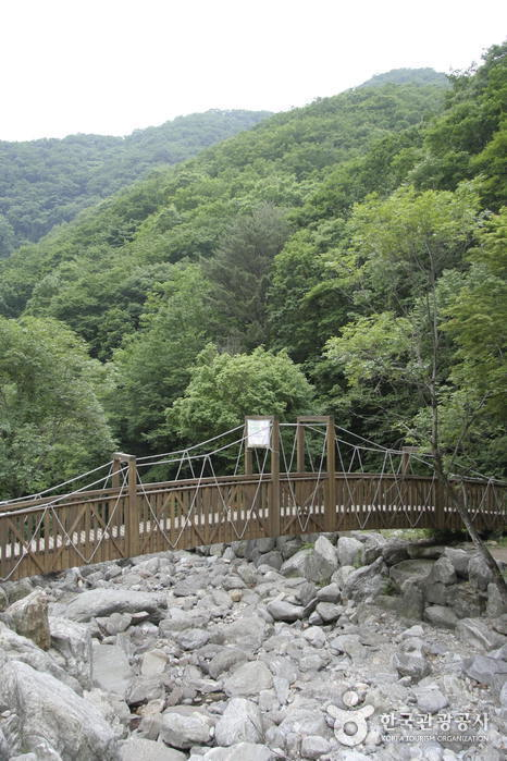 Рекреационно-оздоровительный лесной комплекс Чиптариголь (집다리골자연휴양림)