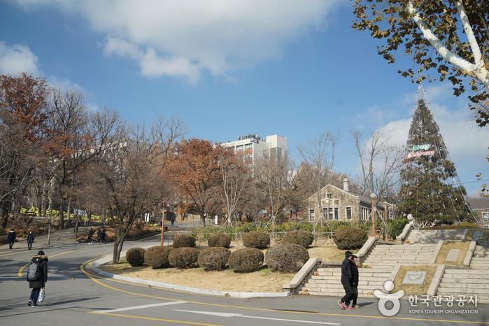 서울 연세대학교 스팀슨관