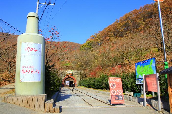 Винный туннель Чхондо (청도 와인터널)22